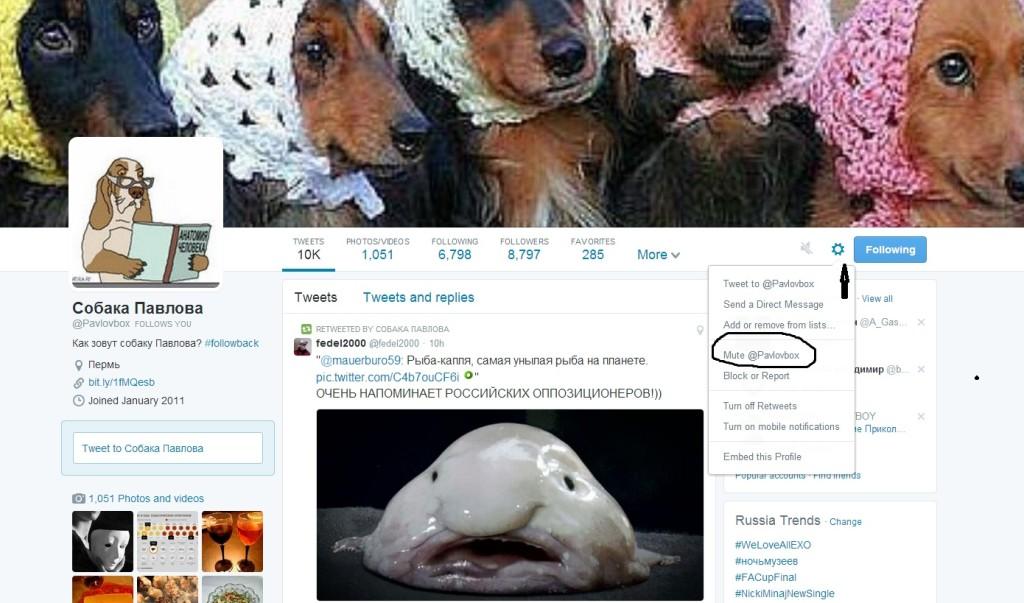 Игнорировать-пользователя-в-Твиттере-из-профиля