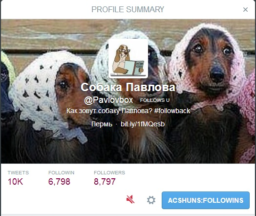 Игнорировать-пользователя-в-Твиттере-как-выглядит-профиль
