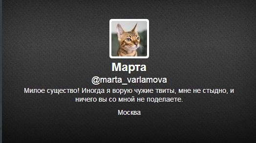 Ретвит-и-другие-действия-в-Твиттере-Марта