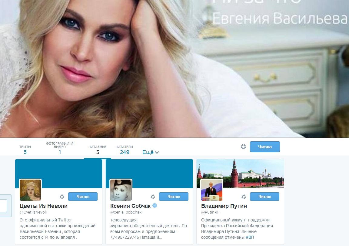 Евгения Васильева твиттер