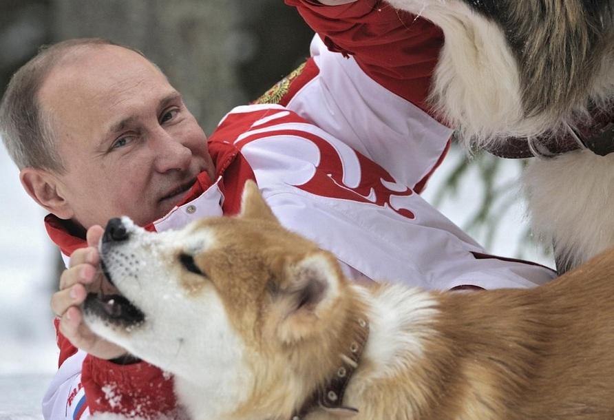 Newsweek про Путина собака