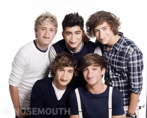Носорот One Direction