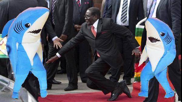 Мугабе споткнулся 1