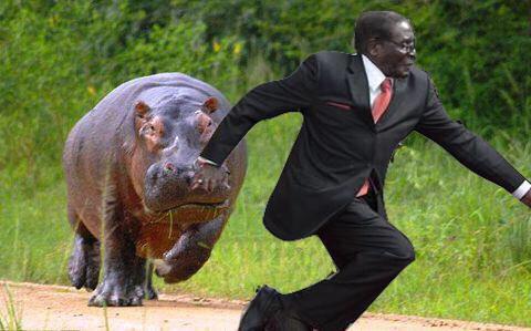 Мугабе споткнулся 6
