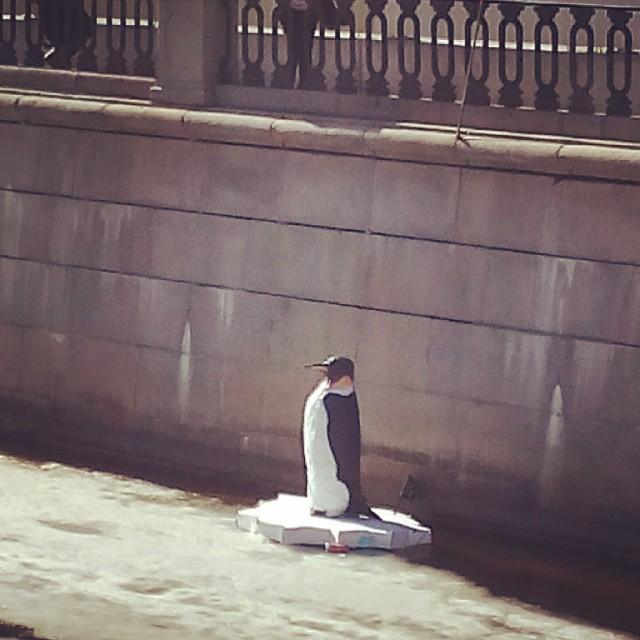 Пингвин в канале Грибоедова 3