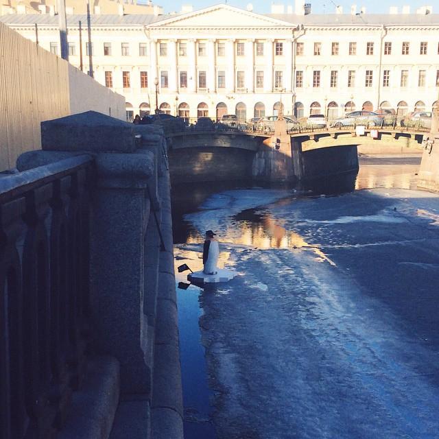 Пингвин в канале Грибоедова 5