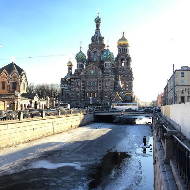 Пингвин в канале Грибоедова 6
