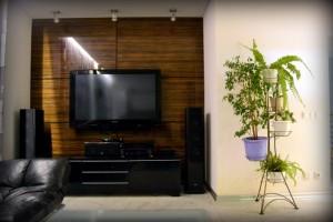 Годева 13а гостиная ТВ