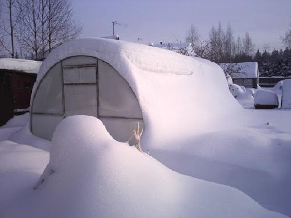 Уборка снега с теплицы зимой